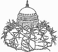 National Capital Cactus               & Succulent Society Logo